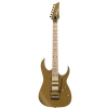 Ibanez RG 657 AHM GDF electric guitar