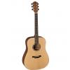 Baton Rouge AR11C/D-W acoustic guitar